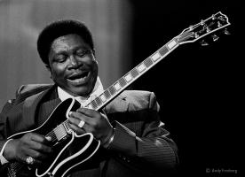 B. B. King profile photo