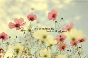 Beautiful Day quote #2