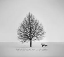 Bench quote #1