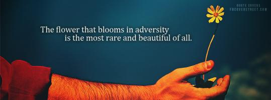 Blooming quote #2