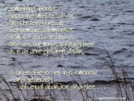 Breeze quote #2