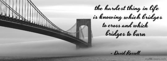 Bridges quote #4