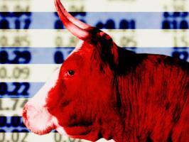 Bull Market quote #2