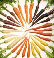 Carrots quote #2