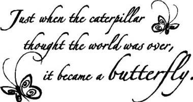 Caterpillar quote #2