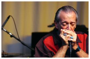 Charlie Musselwhite's quote #1