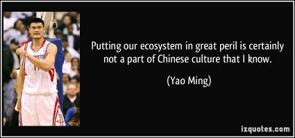 Chinese Culture quote #2