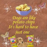 Chips quote #2