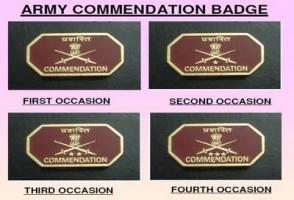 Image result for Commendation Badge
