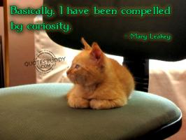 Compelled quote #1