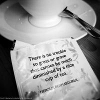 Cooks quote #2