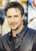David Arquette profile photo