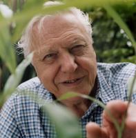 David Attenborough profile photo