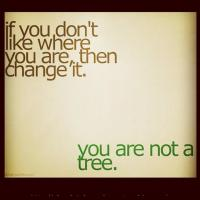 Despicable quote #1