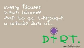 Dirt quote