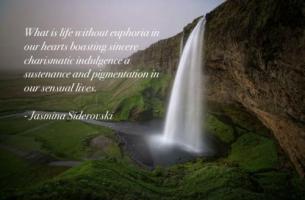 Euphoria quote #1
