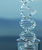 Genes quote #4
