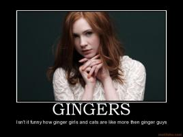 Ginger quote #1