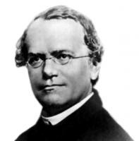 Gregor Mendel's quote #1