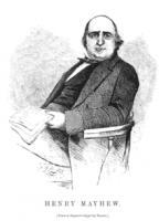 Henry Mayhew profile photo