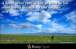 Horse Racing quote