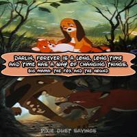 Hound quote #1