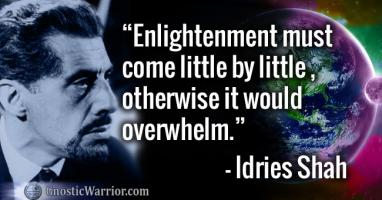 Idries Shah's quote