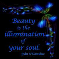 Illumination quote #2