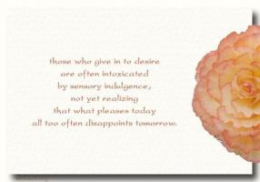 Indulgence quote #2