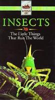 Insects quote #2