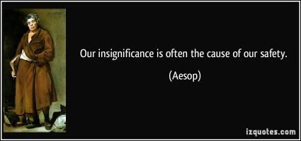 Insignificance quote