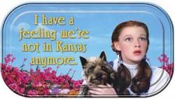 Kansas quote #3