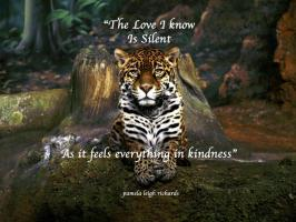 Leopard quote