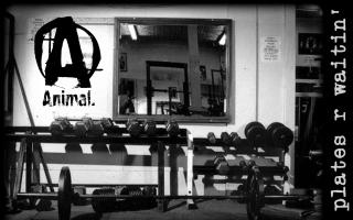Lifting quote #3