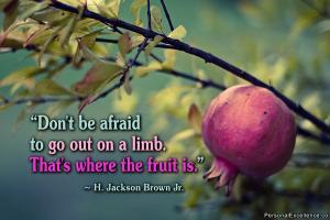 Limb quote #2