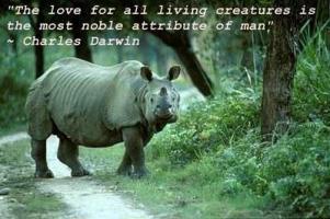 Living Creatures quote #2