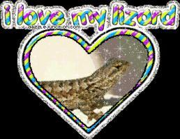 Lizard quote #1