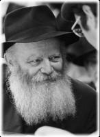 Menachem Mendel Schneerson profile photo