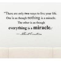 Mojo quote #1