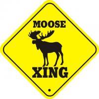 Moose quote #2
