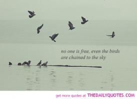 No-One quote #2