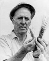 Norman Borlaug profile photo