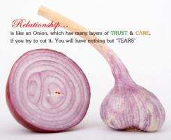 Onion quote #1