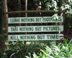 Outdoors quote #7