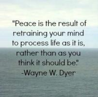 Peace Process quote #2