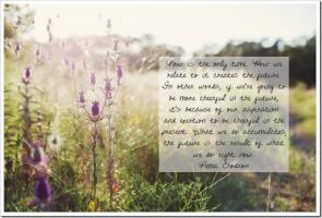 Pema Chodron's quote #4