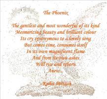 Phoenix quote #2