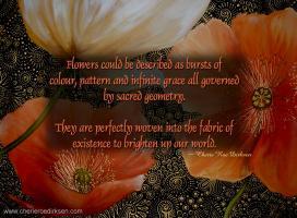 Poppy quote #1