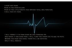 Pulse quote #1