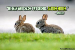 Rabbits quote #2